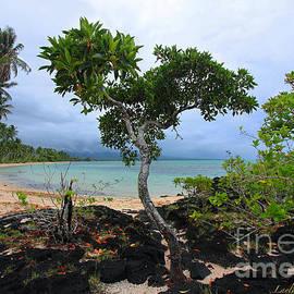Layla Alexander - Virgin Beach Black Lava Tree