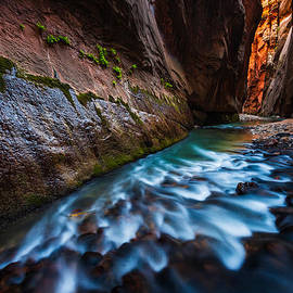 Adam Schallau - Virgin River Narrows in Zion