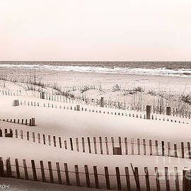 Artist and Photographer Laura Wrede - Virgina Beach Vacation Memories
