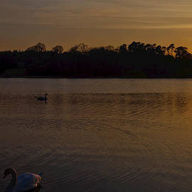 Maj Seda - Virginia Water Sunset