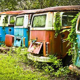 Carolyn Marshall - VW Buses