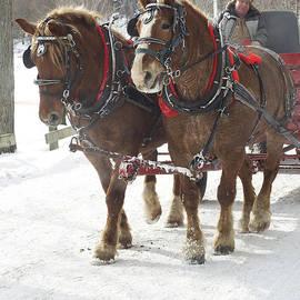 Elaine Mikkelstrup - Wagon Ride