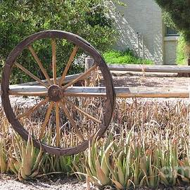 Theresa Davis - Wagon Wheel garden