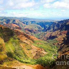 Blackwater Studio - Waimea Canyon