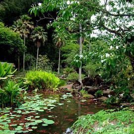 Jim Fitzpatrick - Waimea Valley in the North Shore of Oahu Hawaii