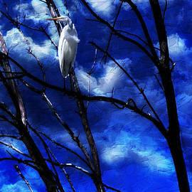 CJ Anderson - Waiting for Dawn