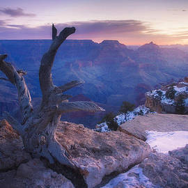 Peter Coskun - Waiting for the Sun