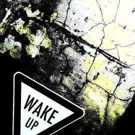 Steve Taylor - Wake Up