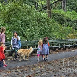David Bearden - Walking in the park