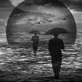 Randall Nyhof - Walking into a Changing Sea