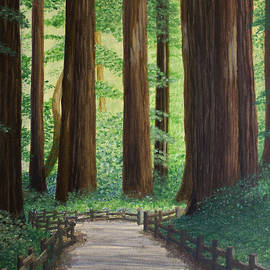 Jacqueline Barden - Walking through Muir Woods