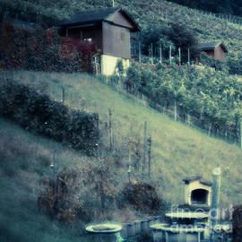 Maria Bobrova - Walking Through The Vineyard