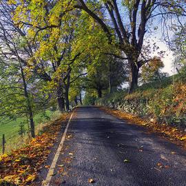 Ian Mitchell - Walks In The Autumn