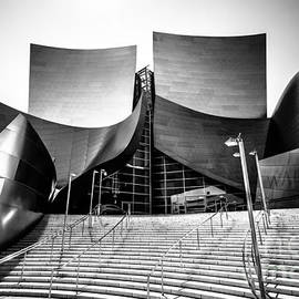 Paul Velgos - Walt Disney Concert Hall in Black and White