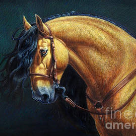 Heidi Carson - Warlander Stallion