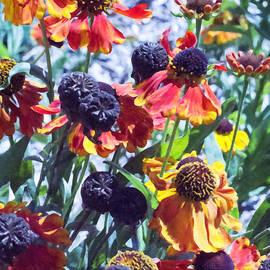 Jo-Anne Gazo-McKim - Warm Autumn Blooms