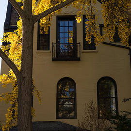 Georgia Mizuleva - Washington D C Facades - Dupont Circle Neighborhood in Yellow