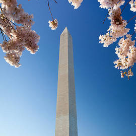 Inge Johnsson - Washington Monument