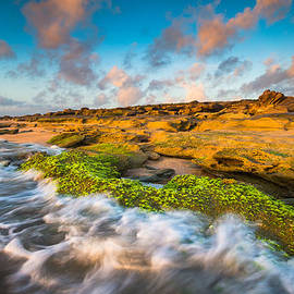 Dave Allen - Washington Oaks State Park Coquina Rocks Beach St. Augustine FL Beaches