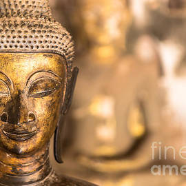 Jennifer Stinson - Wat Si Saket Buddhas X