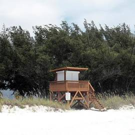 Wendy Gertz - Watching Over the Beach