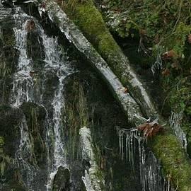 Teresa A Lang - Water and Ice