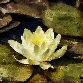 Gun Legler - Water lily