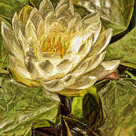 Geraldine Scull   - Water Lily Painting