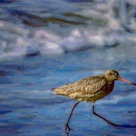 F Leblanc - Water Walker Painting