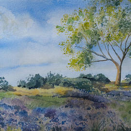 Cascade Colors - Watercolor - Tree and Meadow