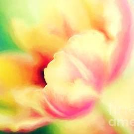 Joan McCool - Watercolor Tulp