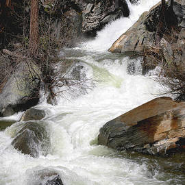 Patricia Sanders - Waterfall Along The Rubicon Trail - Lake Tahoe