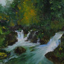 Anees Peterman - Waterfall