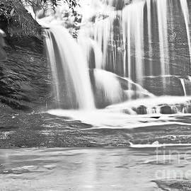 Elvis Vaughn - Waterfall Black and White