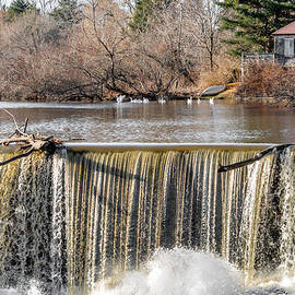 Stroudwater Falls Photography - Waterfall Driftwood and The Stroudwater Geese.