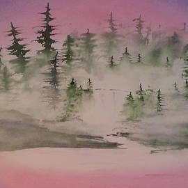 David Bartsch - Waterfall in the Fog
