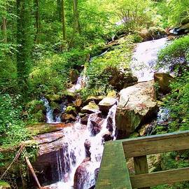 Chuck  Hicks - Waterfall Overlook