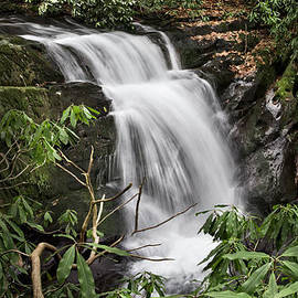Debra and Dave Vanderlaan - Waterfall Panorama