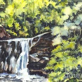 Carol Wisniewski - Waterfalls in Central Park N Y C