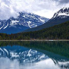 Stuart Litoff - Waterfowl Lake #2