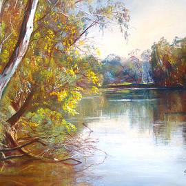 Lynda Robinson - Wattle Time Goulburn River