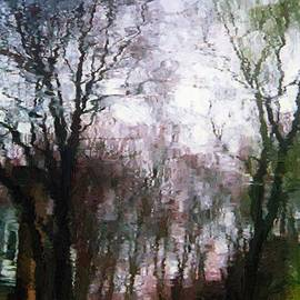 RC DeWinter - Wavy Willows