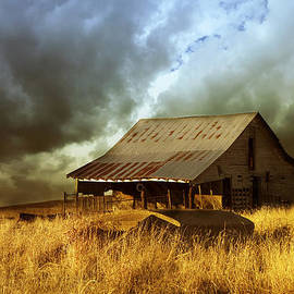 Ann Powell - Weathered Barn  Stormy Sky