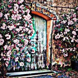 Lainie Wrightson - Weathered Vineyard Door