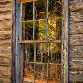 Dave Bosse - Weathered Window