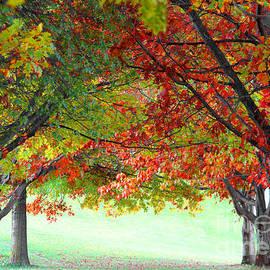 Vishva Vajra - Weaves of Autumn