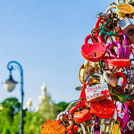 Alexander Senin - Wedding Padlocks