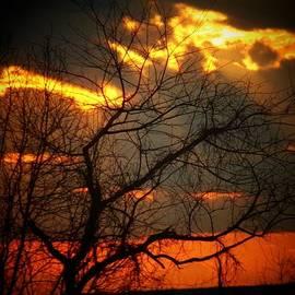 Joyce Kimble Smith - Wednesday Sunset