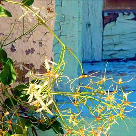 Kathy Barney - Weeds and Wood