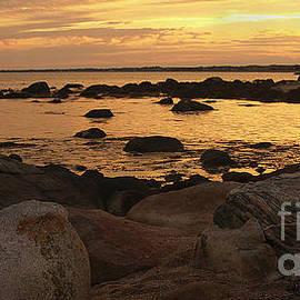 Anna Lisa Yoder - Weekapaug Beach Golden Sunset